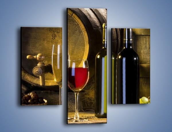 Obraz na płótnie – Wino czerwone czy białe – trzyczęściowy JN107W3