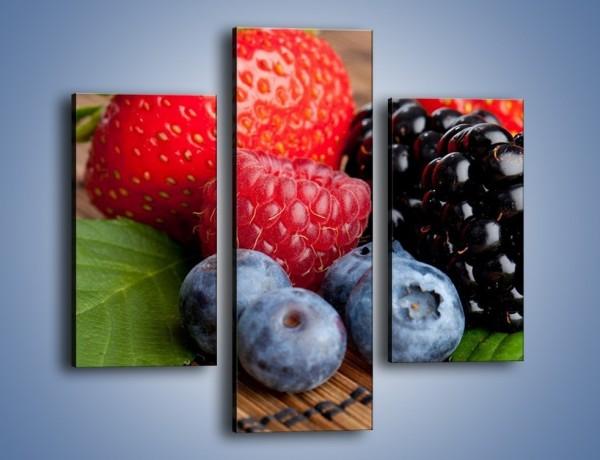 Obraz na płótnie – Dojrzałe owoce leśne – trzyczęściowy JN111W3