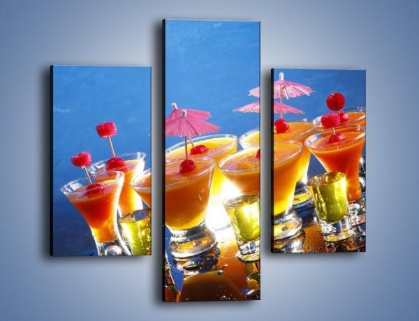Obraz na płótnie – Tropikalne drinki nocą – trzyczęściowy JN160W3