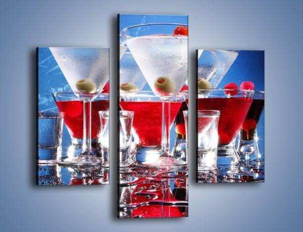 Obraz na płótnie – Martini wstrząśnięte zmieszane – trzyczęściowy JN161W3