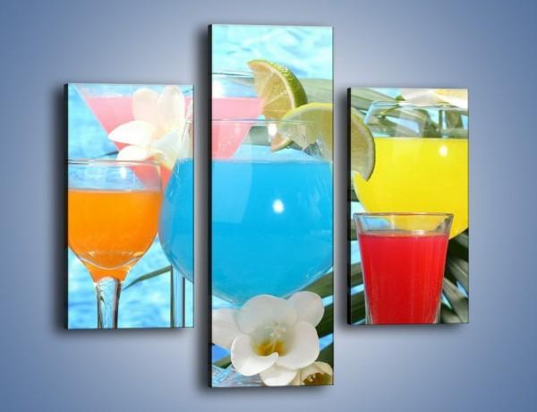 Obraz na płótnie – Drinki na tropikalnej wyspie – trzyczęściowy JN163W3