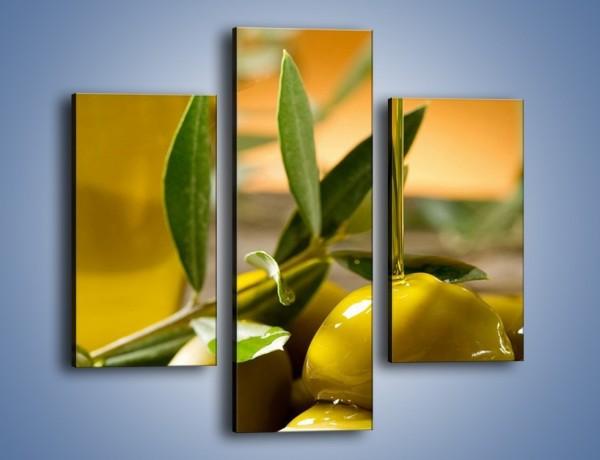 Obraz na płótnie – Oliwa z oliwek – trzyczęściowy JN195W3