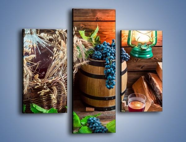 Obraz na płótnie – Wino według własnego przepisu – trzyczęściowy JN202W3