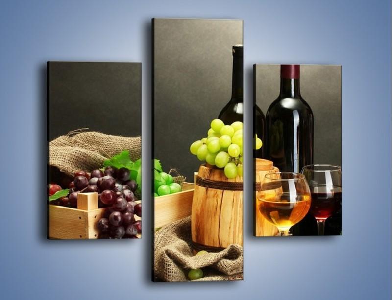 Obraz na płótnie – Wytrawne smaki wina – trzyczęściowy JN289W3