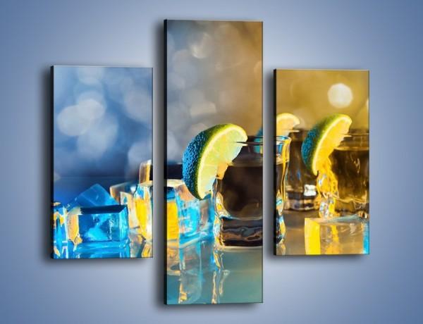 Obraz na płótnie – Zimne shoty z limonką – trzyczęściowy JN294W3