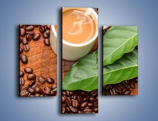 Obraz na płótnie – Ziarna kawy pod liściem – trzyczęściowy JN417W3