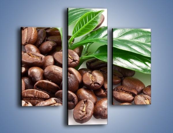 Obraz na płótnie – Kawa wśród zieleni – trzyczęściowy JN418W3