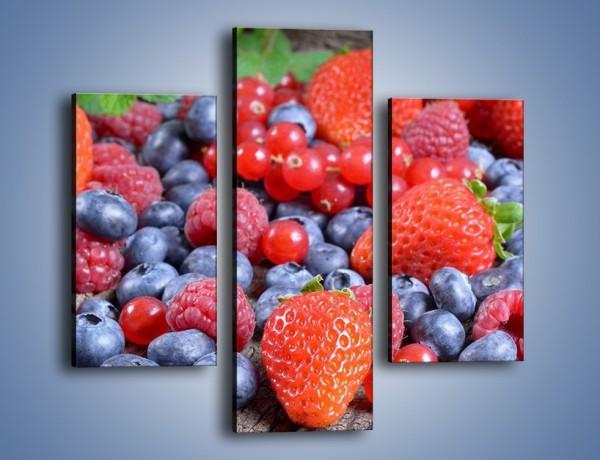 Obraz na płótnie – Owoce z działki – trzyczęściowy JN422W3