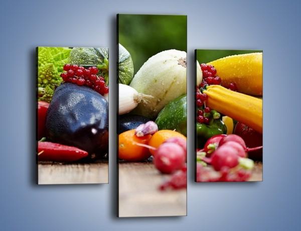 Obraz na płótnie – Warzywa na ogrodowym stole – trzyczęściowy JN483W3