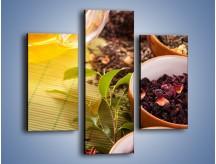 Obraz na płótnie – Aromatyczne przyprawy do herbaty – trzyczęściowy JN492W3