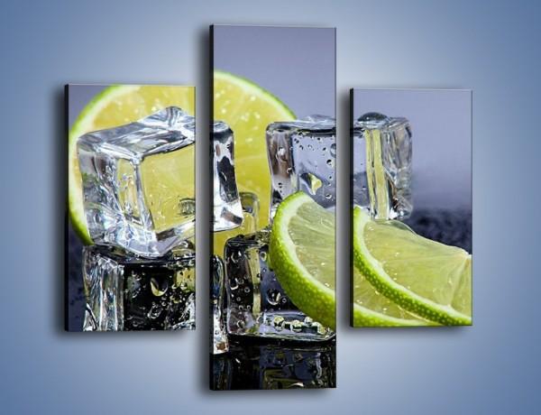 Obraz na płótnie – Plastry limonki o zmroku – trzyczęściowy JN496W3