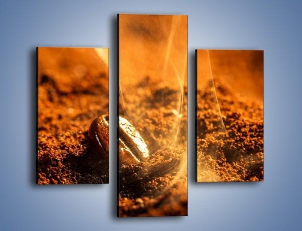 Obraz na płótnie – Znalezione ziarno kawy – trzyczęściowy JN526W3
