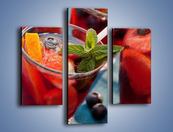Obraz na płótnie – Kompot z letnich owoców – trzyczęściowy JN556W3