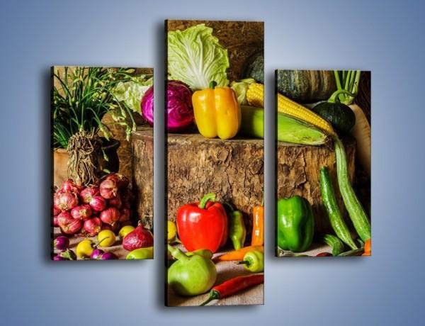 Obraz na płótnie – Warzywa rozrzucone na drzewie – trzyczęściowy JN560W3