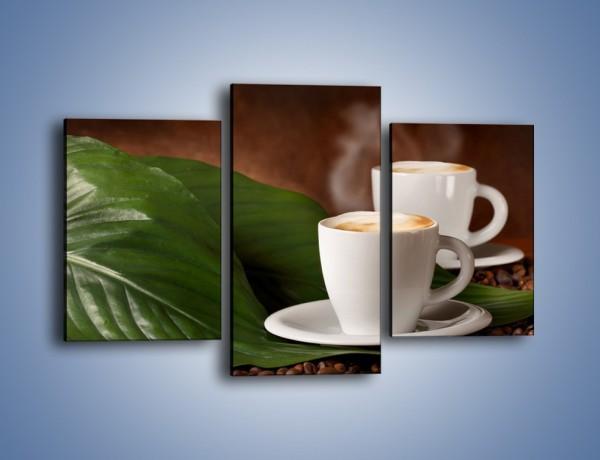 Obraz na płótnie – Kawa na eukaliptusie – trzyczęściowy JN576W3