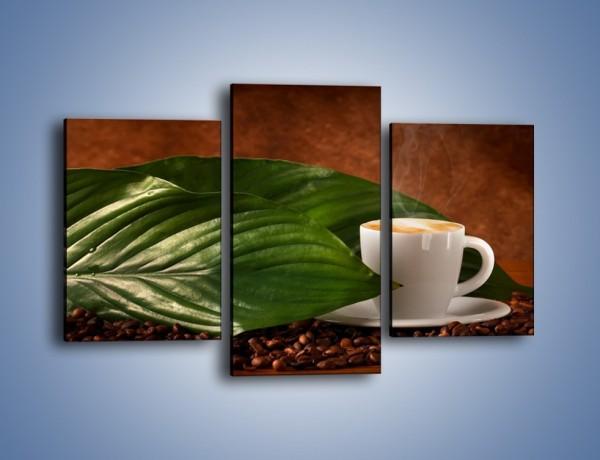 Obraz na płótnie – Kawa schowana w eukaliptusie – trzyczęściowy JN587W3