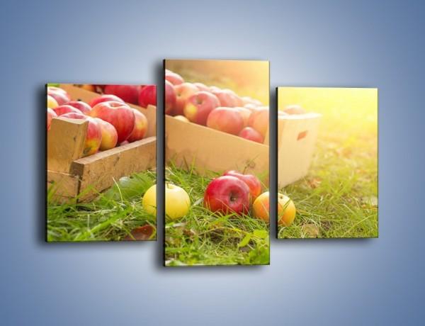 Obraz na płótnie – Jabłka skąpane w trawie – trzyczęściowy JN628W3
