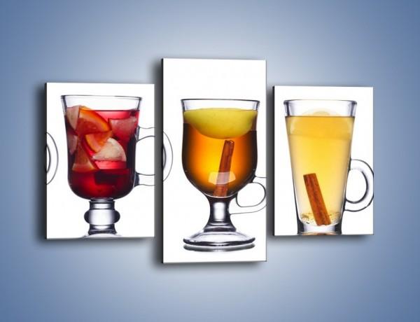 Obraz na płótnie – Kombinacje owocowych napoi – trzyczęściowy JN634W3