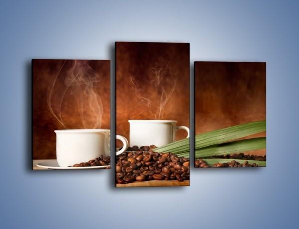 Obraz na płótnie – Ziarna kawy dobrze ukryte – trzyczęściowy JN671W3