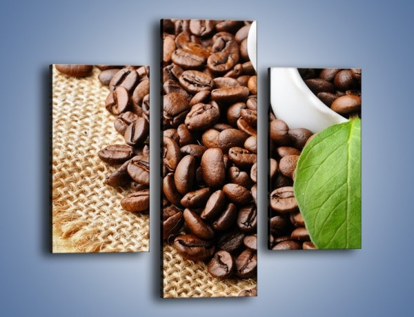 Obraz na płótnie – Liść na kawie – trzyczęściowy JN688W3