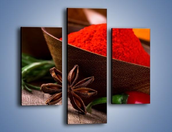 Obraz na płótnie – Kolorowa papryka w proszku – trzyczęściowy JN744W3