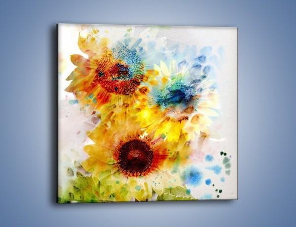 Obraz na płótnie – Ścięte słoneczniki – jednoczęściowy kwadratowy GR464