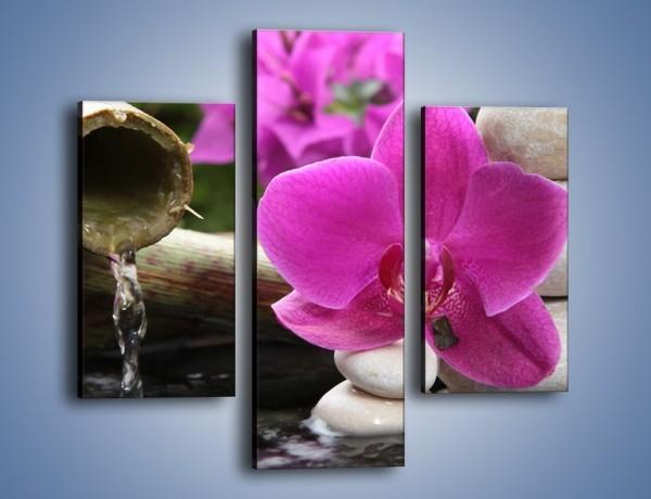 Obraz na płótnie – Różowy storczyk i białe kamienie – trzyczęściowy K026W3