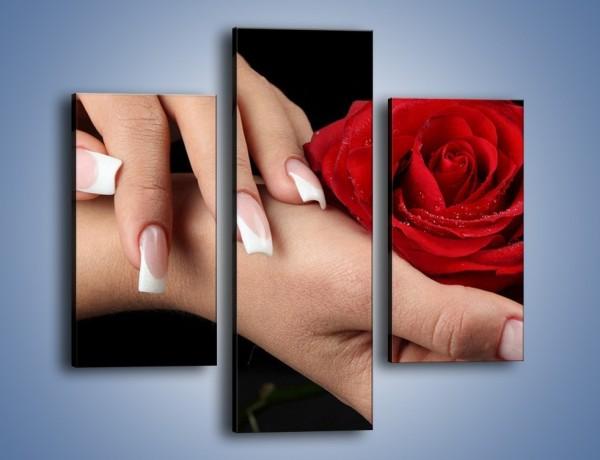 Obraz na płótnie – Czerwona róża w dłoni – trzyczęściowy K037W3