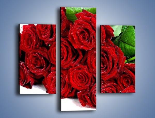 Obraz na płótnie – Oszronione czerwone róże – trzyczęściowy K047W3