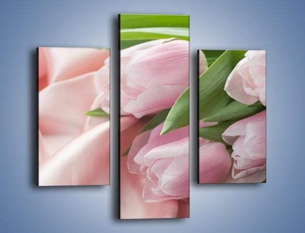Obraz na płótnie – Odpoczynek tulipanów na atłasie – trzyczęściowy K050W3