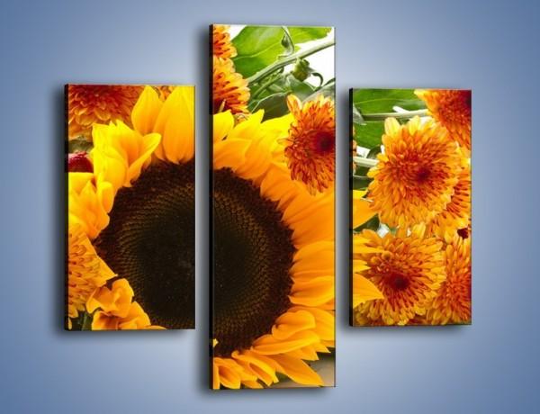 Obraz na płótnie – Słoneczniki nie tylko do jedzenia – trzyczęściowy K084W3