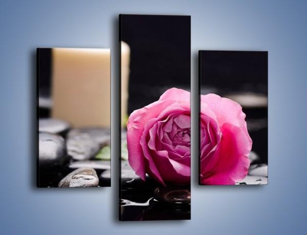 Obraz na płótnie – Kwiat w odbiciu świecy – trzyczęściowy K1008W3