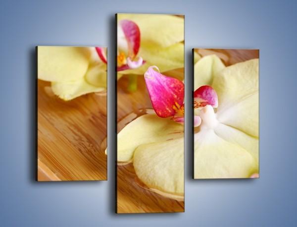 Obraz na płótnie – Drewniana łódeczka z kwiatami – trzyczęściowy K1024W3