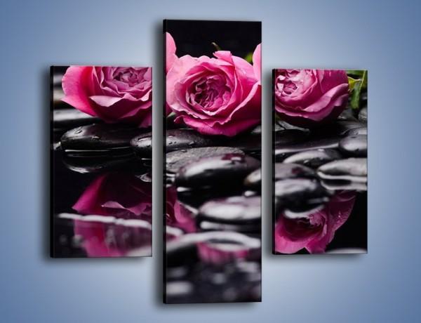 Obraz na płótnie – Malutkie różane trio – trzyczęściowy K1027W3
