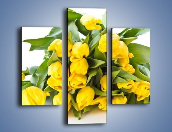 Obraz na płótnie – Piramida żółtych tulipanów – trzyczęściowy K111W3