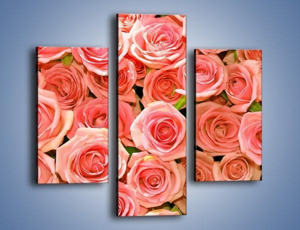 Obraz na płótnie – Łososiowe głowy róż – trzyczęściowy K116W3