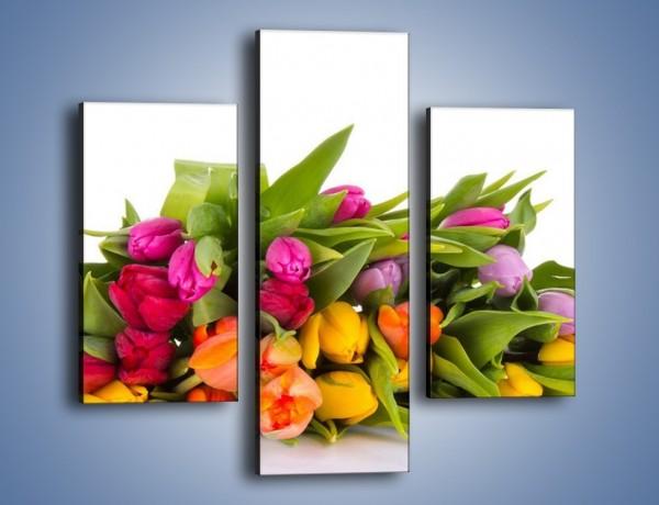 Obraz na płótnie – Kolorowe tulipany pełne luzu – trzyczęściowy K117W3