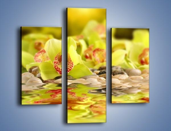Obraz na płótnie – Wodne odbicie storczyków – trzyczęściowy K129W3