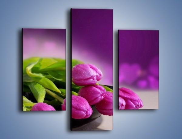 Obraz na płótnie – Tulipany w kolorze lawendy – trzyczęściowy K133W3
