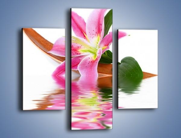 Obraz na płótnie – Odbicie wodne lilii – trzyczęściowy K142W3