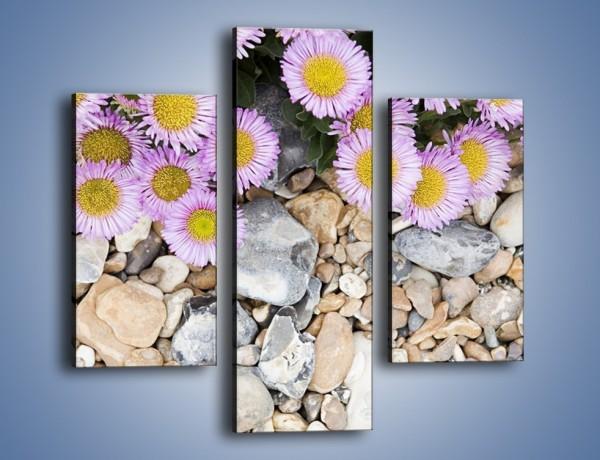 Obraz na płótnie – Kolorowe kamienie czy małe kwiatuszki – trzyczęściowy K146W3