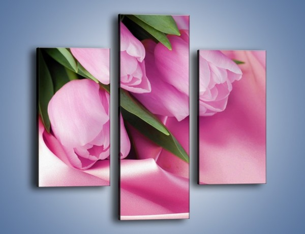 Obraz na płótnie – Atłas wśród tulipanów – trzyczęściowy K152W3
