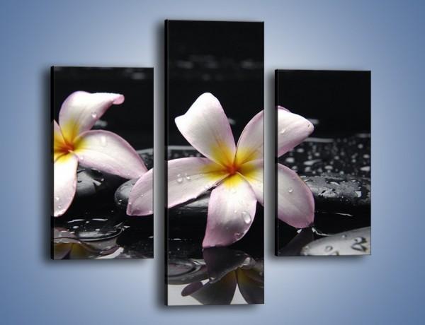 Obraz na płótnie – Delikatne kwiaty w kąpieli wodnej – trzyczęściowy K157W3