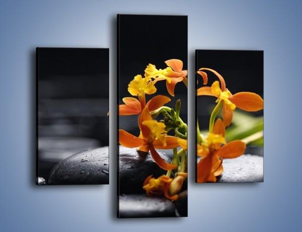 Obraz na płótnie – Gałązka małych storczyków – trzyczęściowy K160W3