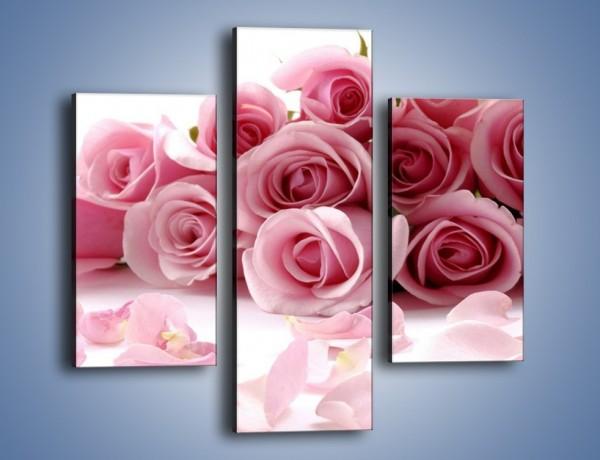 Obraz na płótnie – Nadal piękne róże – trzyczęściowy K167W3