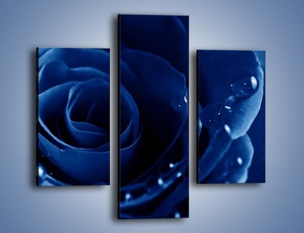 Obraz na płótnie – Noc odbita w płatkach róż – trzyczęściowy K176W3