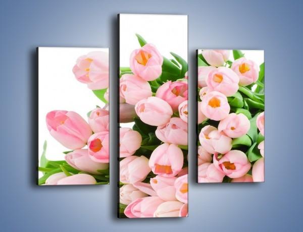 Obraz na płótnie – Wiosna w tulipanach – trzyczęściowy K182W3