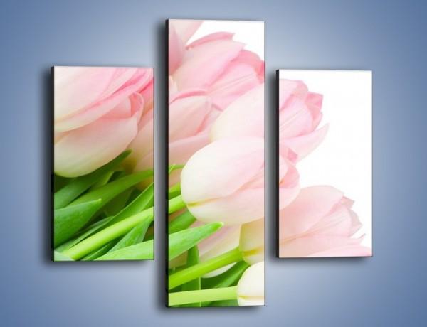 Obraz na płótnie – Światło w kwiatach – trzyczęściowy K183W3