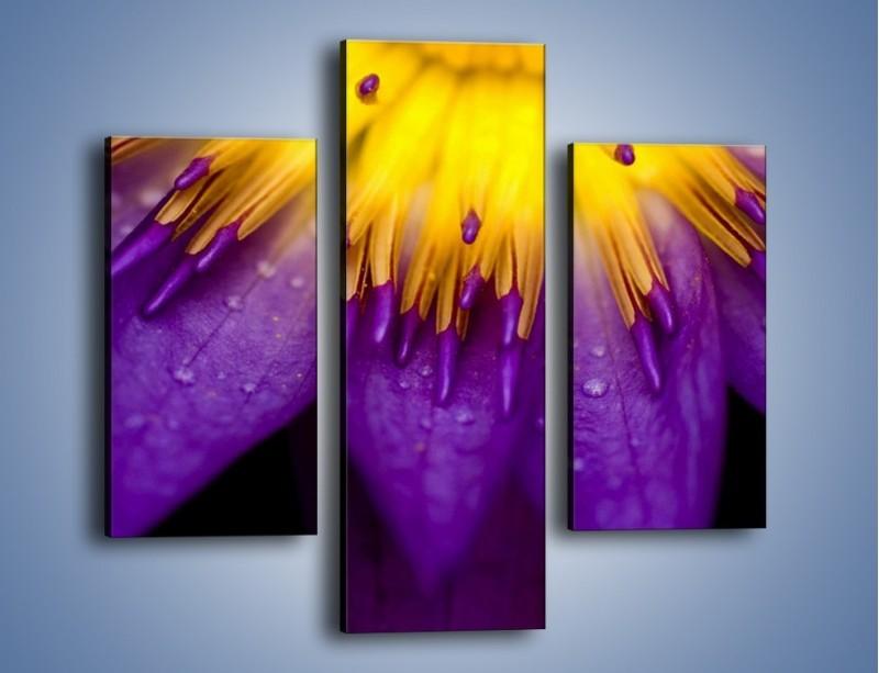 Obraz na płótnie – Baśniowy kwiat z tajemnicą – trzyczęściowy K189W3