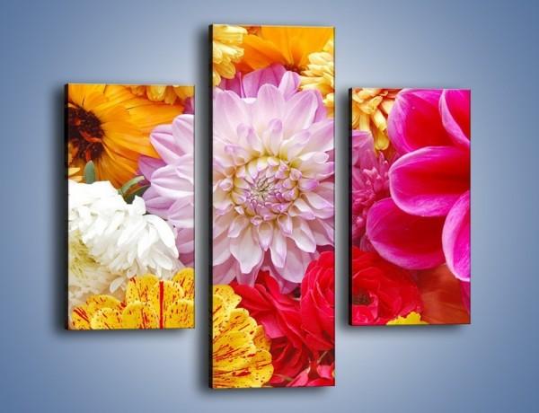 Obraz na płótnie – Letnie kwiaty z działki – trzyczęściowy K198W3